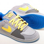 Nike SB SNT Team Edition